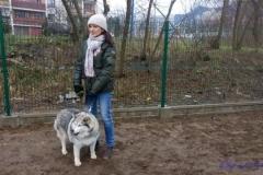 Psi-Park-w-Augustowie-17