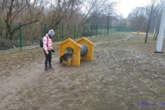 Psi-Park-w-Augustowie-19